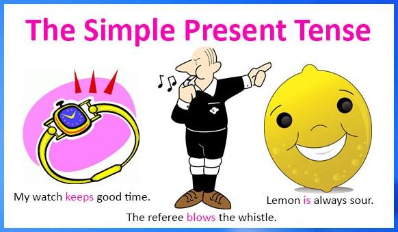 Ilustrasi contoh kalimat simple present tense